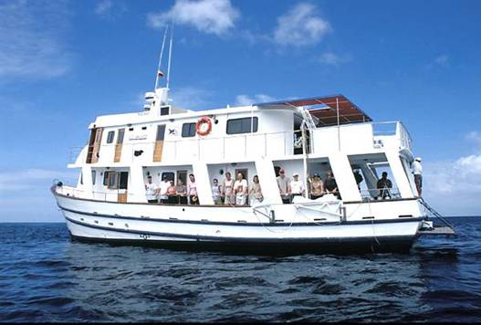 Pelicano Yacht Galapagos Tours